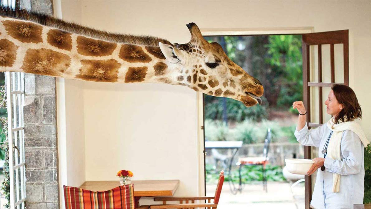 Giraffe Manor // Across Africa….