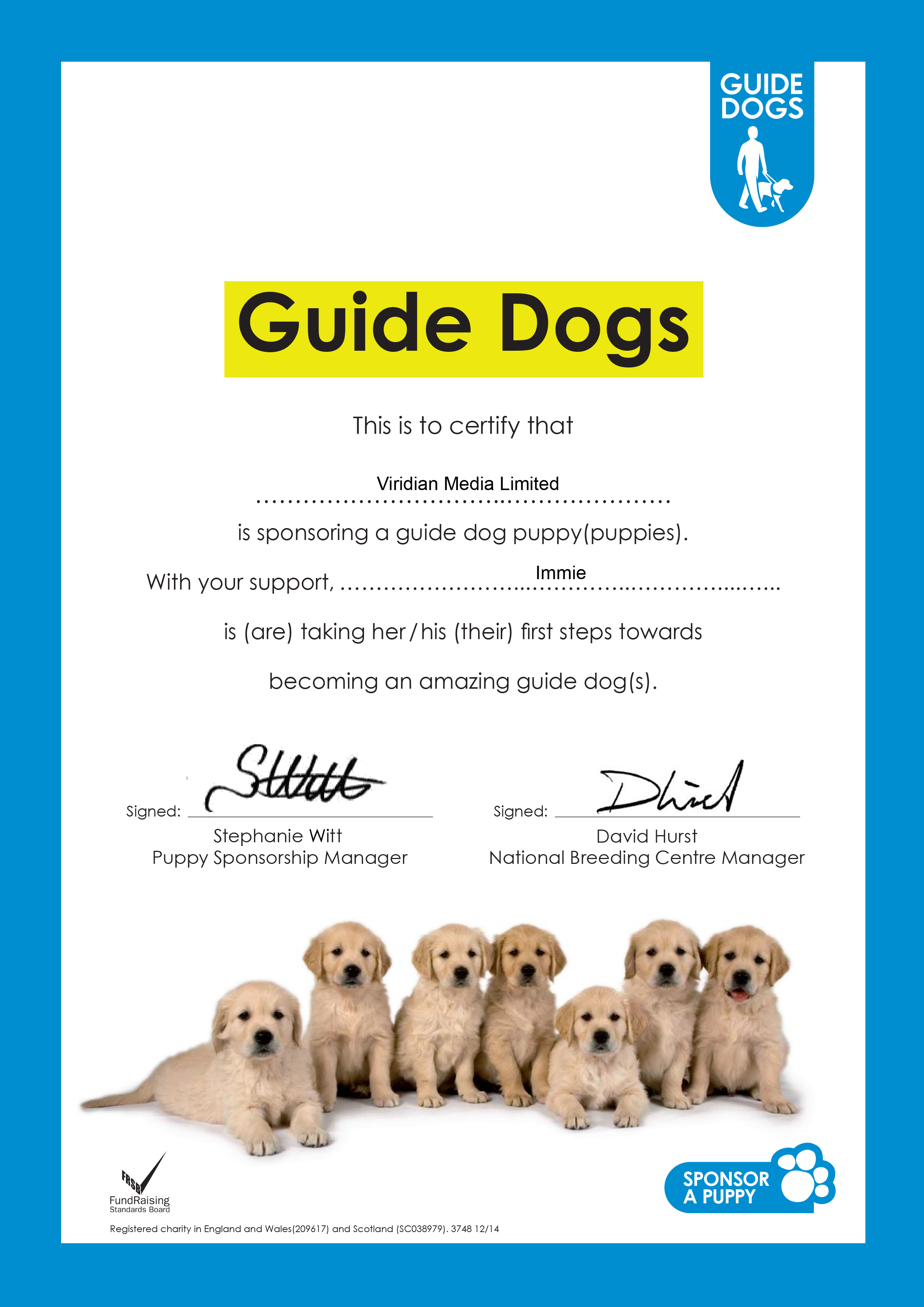 Sponsor a puppy buddy's puppy gallery | guide dogs.