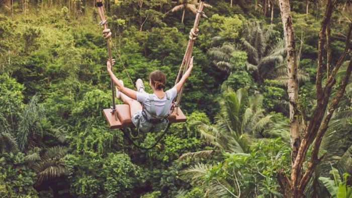 travelling-in-a-gap-year--jungle-image